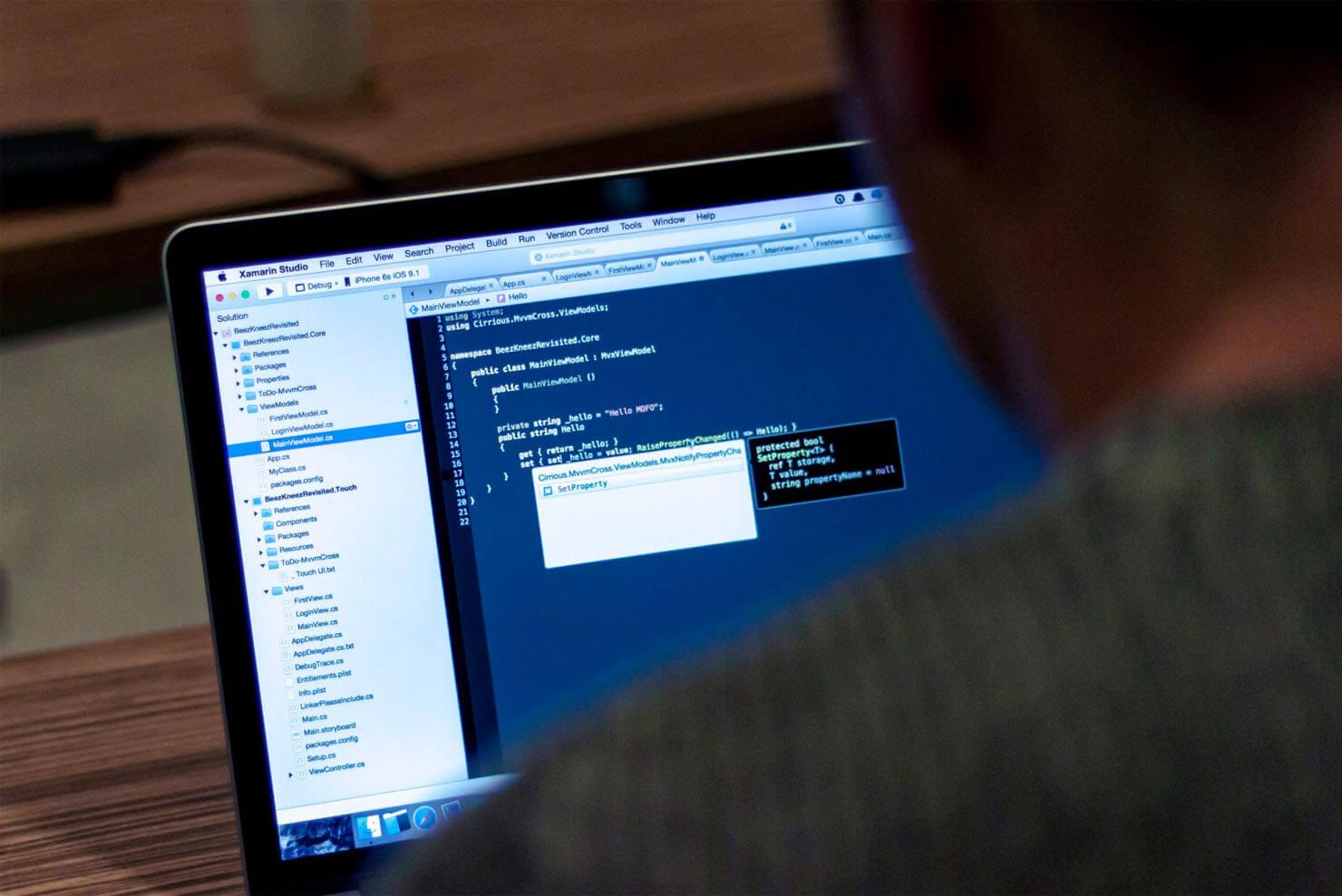 frilansande webbutvecklare frontend-utveckling